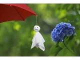☆雨の日キャンペーン☆