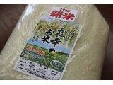 神戸市西区櫨谷町松本のお米