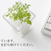福井税務会計事務所