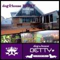 dog☆house BETTY(ドッグ☆ハウス ベティー)