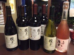 椀子ワイン 20%OFF