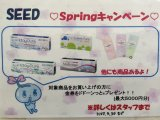 SPRINGキャンペーン★
